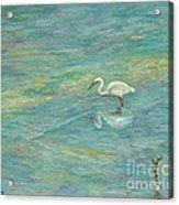 Dreamy Bird Acrylic Print