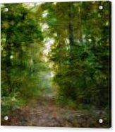 Dreamy Forest Acrylic Print