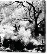 Dreamy Gardens - 1007 Acrylic Print
