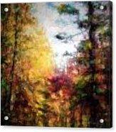 Dreamy Nature Walk Acrylic Print