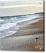 Dreamy Ocean Beach North Carolina Coastal Beach  Acrylic Print