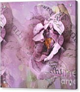 Dreamy Purple Lavender Impressionistic Abstract Floral Art Photography Acrylic Print