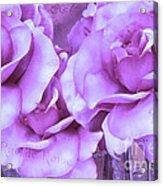 Dreamy Shabby Chic Purple Lavender Paris Roses - Dreamy Lavender Roses Cottage Floral Art Acrylic Print