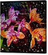Drenched Flowers Acrylic Print