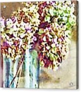 Dried Autumn Hydrangeas - Digital Paint Acrylic Print