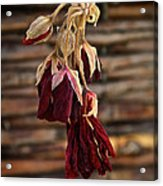 Dried Floral Acrylic Print