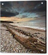 Driftwood Laying On The Gravel Beach Acrylic Print