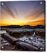 Driftwood Acrylic Print by Mark Leader