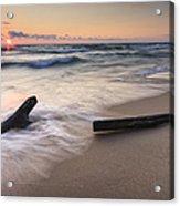 Driftwood On The Beach Acrylic Print by Adam Romanowicz
