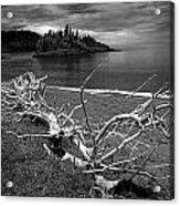 Driftwood On The Shore Near Wawa Ontario Canada Acrylic Print