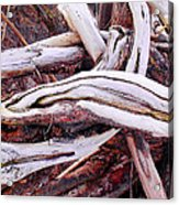 Driftwood Acrylic Print