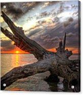 Driftwood Sunset Acrylic Print