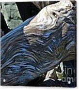 Driftwood Texture And Shadows Acrylic Print