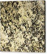 Dripstones Acrylic Print