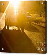 Driving Into The Sun Acrylic Print by Colin and Linda McKie
