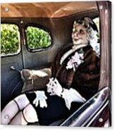 Driving Miss Daizee Acrylic Print