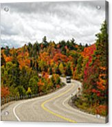 Driving Through Algonquin Park In Fall Acrylic Print