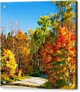 Driving Through Autumn Acrylic Print
