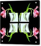 Droopy Tulips Acrylic Print