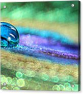 Drop Of Illusion Acrylic Print