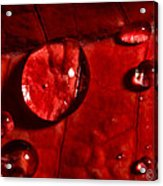 Droplets On Red Acrylic Print