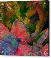 Drops Of Color Acrylic Print