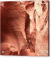 Dry Fork Sandstone Acrylic Print by Adam Jewell