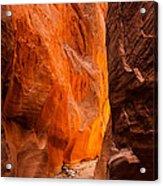 Dry Fork Slot Canyon Acrylic Print