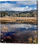 Dry Lagoon In Winter Panorama Acrylic Print