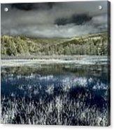 Dry Lagoon Winter Acrylic Print