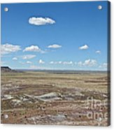 Dry Riverbed Acrylic Print