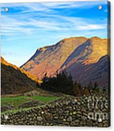 Dry Stone Walls In Patterdale In The Lake District Acrylic Print