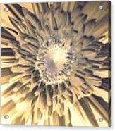 Dsc207-003 Acrylic Print