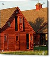 Dual Barns-3811 Acrylic Print