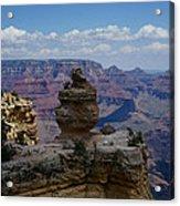 Duck On A Rock Grand Canyon Acrylic Print