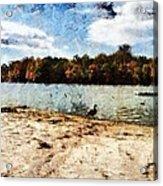Ducks At The Beach Again Acrylic Print