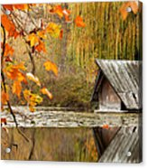 Duck's House Acrylic Print by Evgeni Dinev