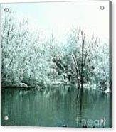 Ducks On A Snowy Pond Acrylic Print