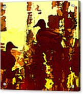 Ducks On Red Lake 3 Acrylic Print