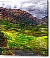 Duddon Valley Acrylic Print