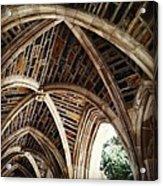 Duke Arches Acrylic Print