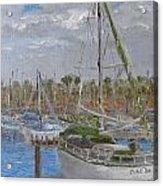 Dulcinea  Acrylic Print