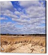 Dune Grass And Clouds Acrylic Print