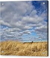 Dune Grass And Sky Acrylic Print
