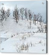 Dune Trees And Snow Acrylic Print