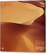Dunes - 192 Acrylic Print