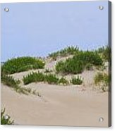 Dunes And Grasses 6 Acrylic Print