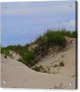 Dunes And Grasses 8 Acrylic Print