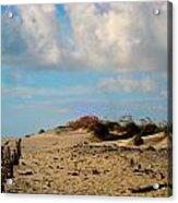 Dunes At Obx Acrylic Print