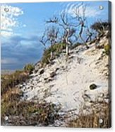 Dunes Of Santa Rosa Island Acrylic Print